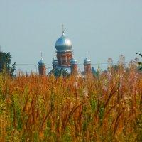 Среди полей блестит крестами.... :: Galina Leskova