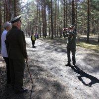 на память в день Победы :: Наталья