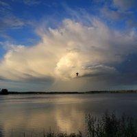 Валдай :: виктория Скрыльникова