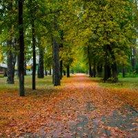 Осень :: Геннадий Хоркин
