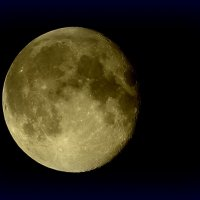 Луна :: Нэля Лысенко