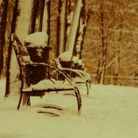 зима :: Наталья Макарова