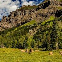 The Alps 2014 Switzerland Kandersteg 11 :: Arturs Ancans