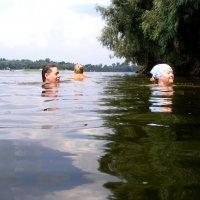 летнее купание :: Александр Скамо