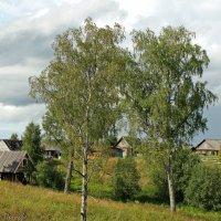 Деревня Волговерховье :: Олег Попков