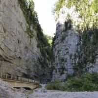 Юпшарский каньон Абхазия :: Михаил Нога