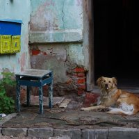 Кристина Сиденко - На самом донышке :: Фотоконкурс Epson