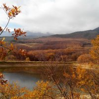 Позолотила осень лес... :: Ольга Голубева