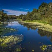 подмосковье река протва :: юрий макаров