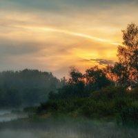 Островок в тумане. :: Andrei Dolzhenko
