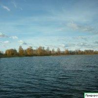Придорожное озеро :: Татьяна Юрасова