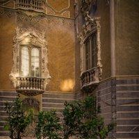 Дерево в испанском дворе :: Vasiliy V. Rechevskiy