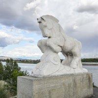 На берегу ,Енисея в Кызыле :: юрий Амосов