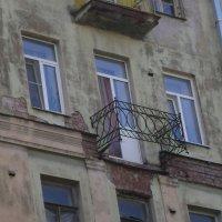 Ужасы города Питера :: Марина Домосилецкая