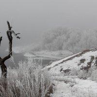 Весенний туман :: Dr. Olver  ( ОлегЪ )