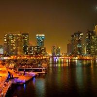 Ночной Дубай 2 :: Андрей Гомонов