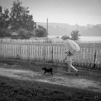 Дама с собачкой :: Николай Белавин