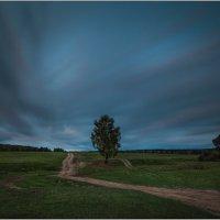 Уж небо осенью дышало... :: Валерий Шейкин