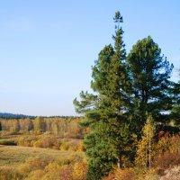 А Осень уже правит... :: Татьяна Аистова