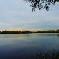 """Озеро  """"Белое""""  в  Косино :: Galina Leskova"""