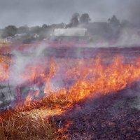 Пожар на ячменном поле :: Валерий Талашов
