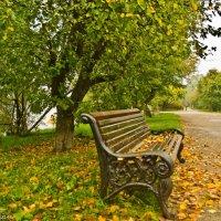 Осень на набережной. :: Виктор Евстратов