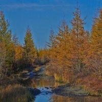 Осень на Колыме. Дорога на Пролог (место такое) :: Юрий Слюньков