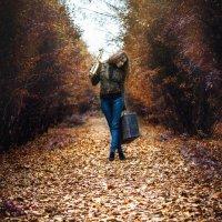 Золотая осень :: Evgeny Filatov