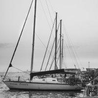 Яхты :: Павел Даль