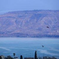 Галилейское озеро :: Александр Деревяшкин