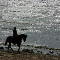 Прогулка :: Вячеслав Крапивин