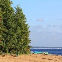 На заливе :: Aнна Зарубина