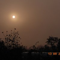 Солнце в тумане... :: Vladikom