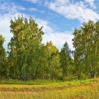 Осень :: Николай Мальцев