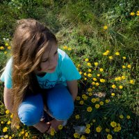 Цветы :: Екатерина Змиенко