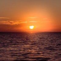 Восход над заливом :: Igor Topchiev