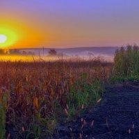 солнце встает :: юрий иванов