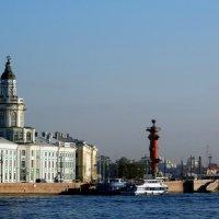 Кунсткамера,мост и колонна. :: Владимир Гилясев