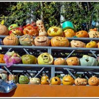 У нас тут свой Хэллоуин... (Рыжий фестиваль) :: muh5257