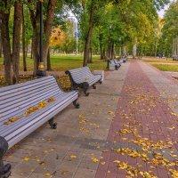 Осень в парке :: Любовь Потеряхина