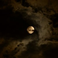 луна в очках и улыбается... :: Svetlana AS