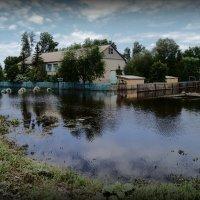 После наводнения :: Лариса Карпушина