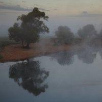 В тумане... :: Roman Lunin