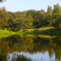 Осень в Павловске :: Денис Матвеев