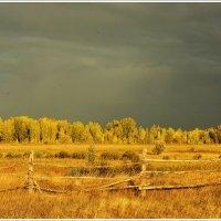 Золотая Осень :: Павел Пироговский