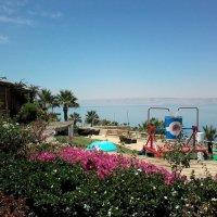 Побережье Мертвого моря. :: Жанна Викторовна