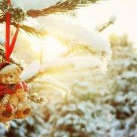 Зима 2013 :: Дарья Яковлева