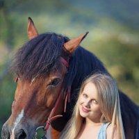 "Проект""Моя любимая лошадка"" :: Оксана Зарубина"