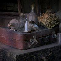 В старой кладовке :: Вера Шамраева