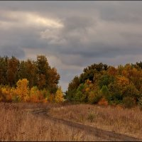 Краски осени :: Александр Смольников